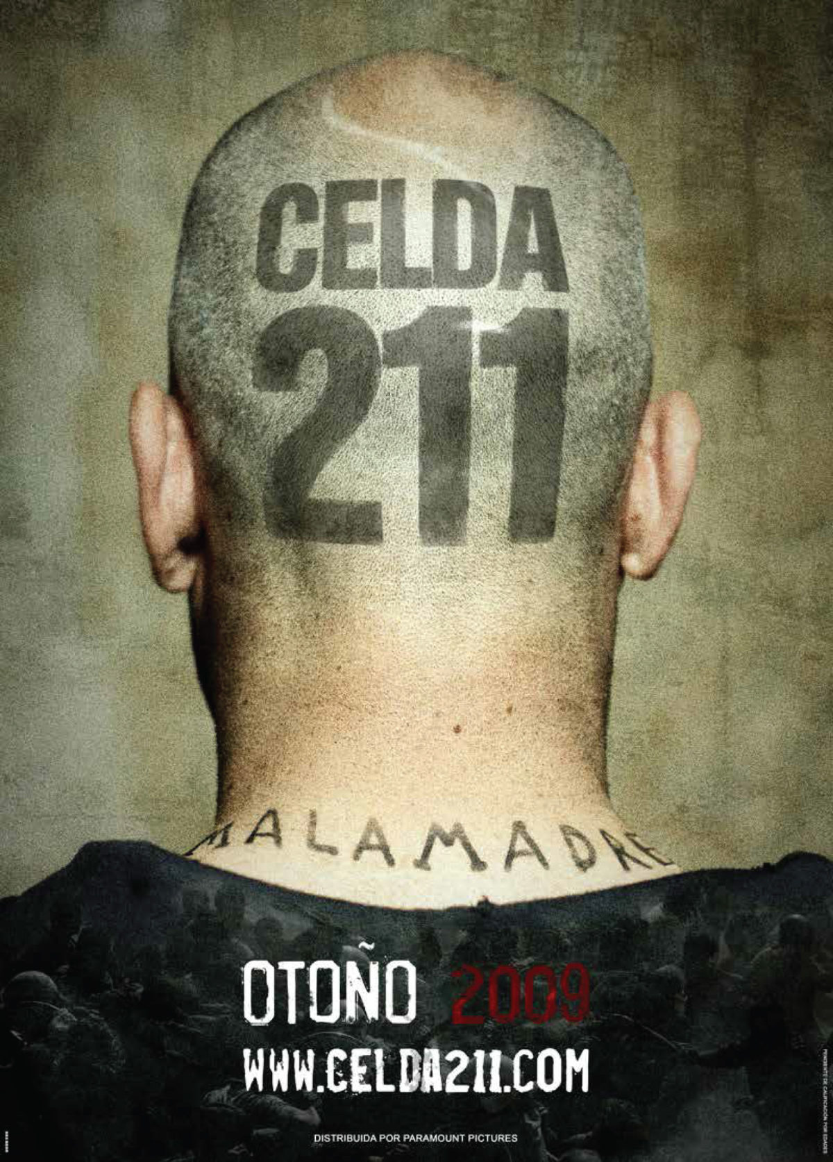 Cell 211 2009